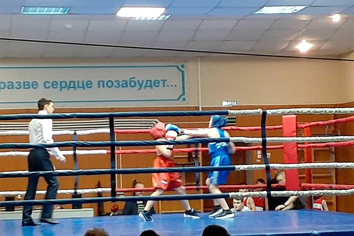 посвящение в боксеры