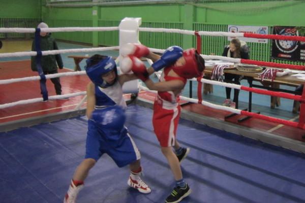 20 Всероссийский турнир по боксу