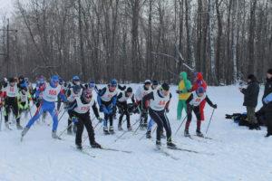 областные соревнования по лыжным гонкам